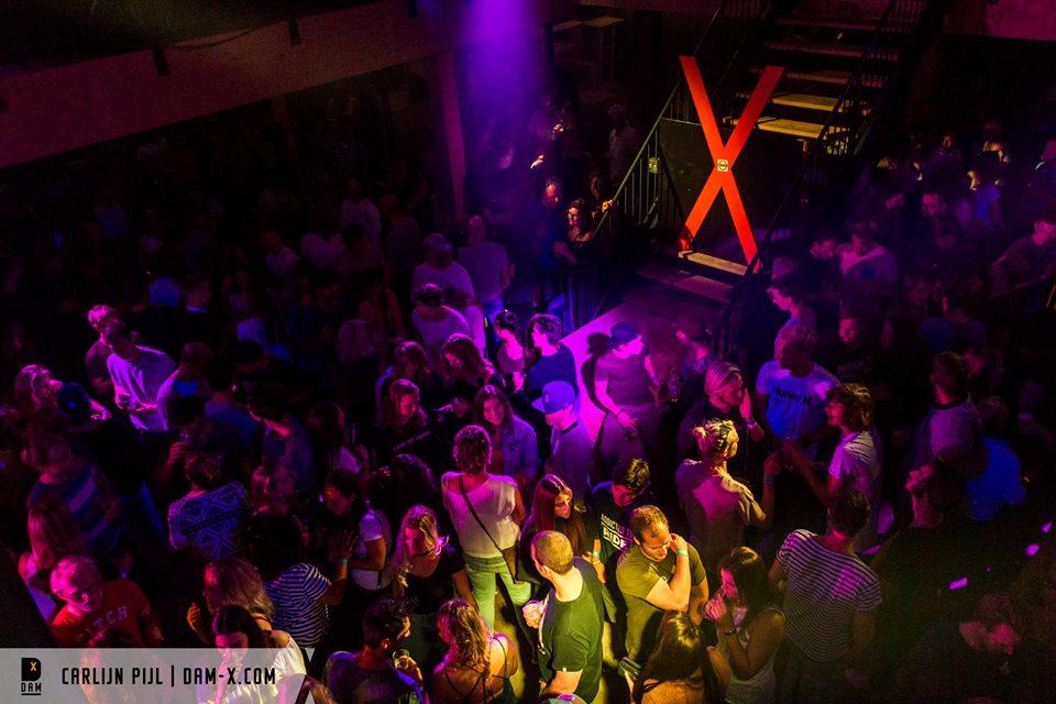 party-damx