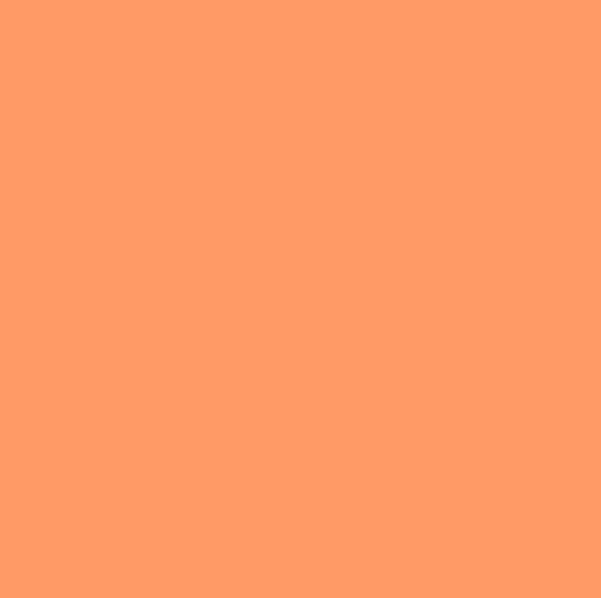 summer_blank-color-theme-edition27
