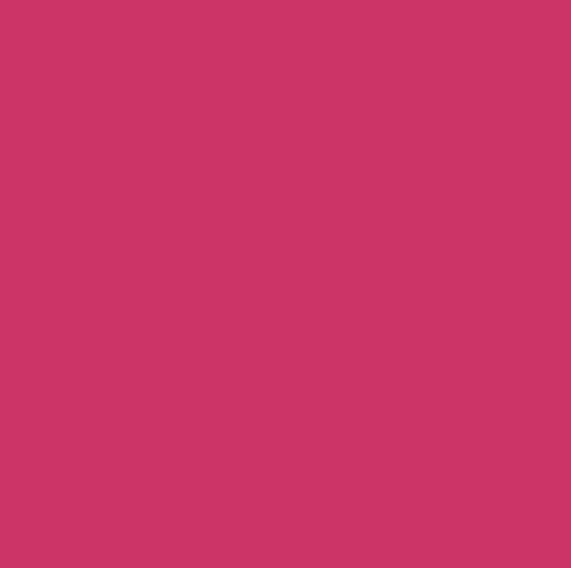 summer_blank-color-theme-edition29